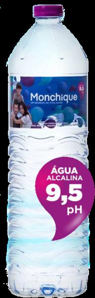 Monchique, stilles Mineralwasser (1,5 Liter PET-Flasche)