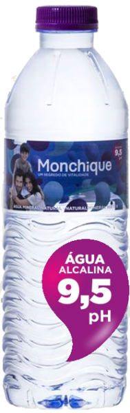 Monchique, stilles Mineralwasser (0,5 Liter PET-Flasche)